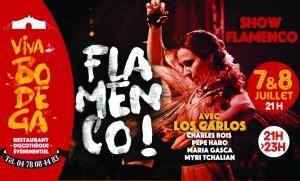10- Flamenco JUILLET 2017